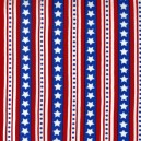 Tissu Freedom lignes Americana